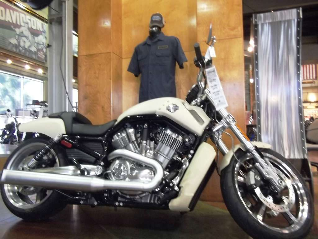 harley davidsons use of the internet Harley-davidson,inc, known for its famous bar and shield trademark, is based out ofmilwaukee, wisconsin it is currently a public company with over 100years of.